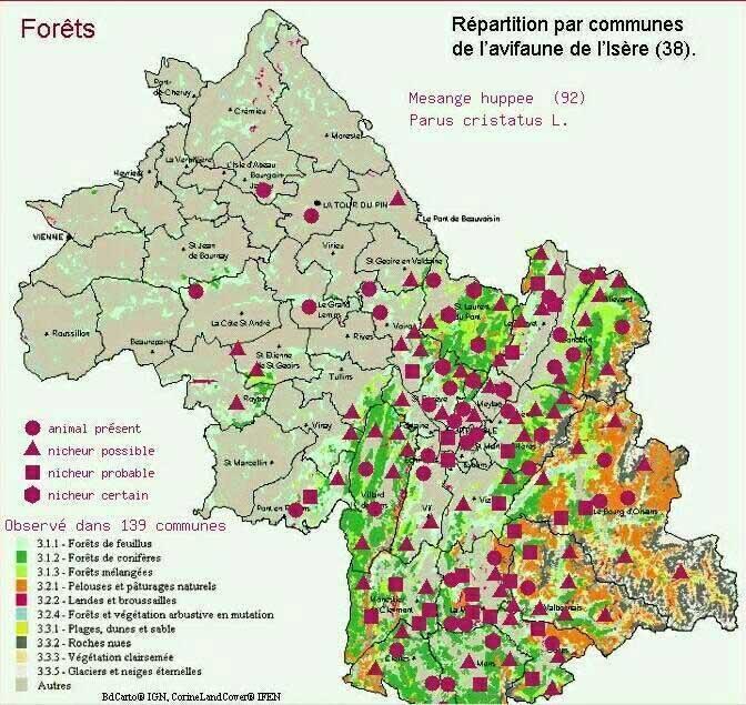 Oiseaux Du Vercors Cartes De Repartition De 140 Especes Ecologie